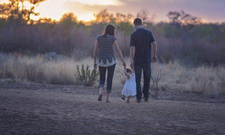 referendumul pentru familie